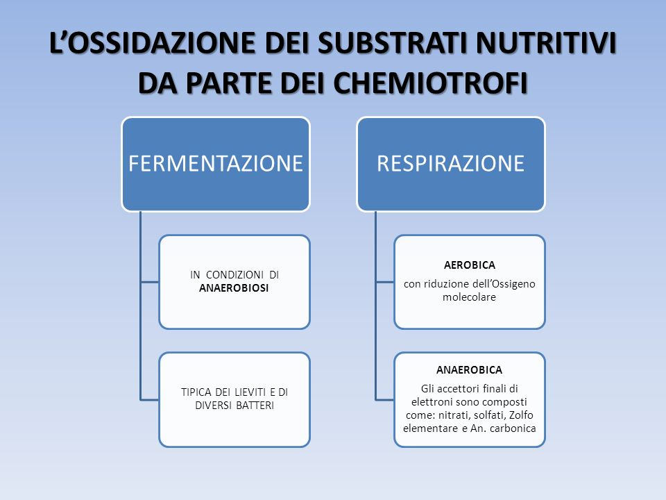 L'OSSIDAZIONE DEI SUBSTRATI NUTRITIVI DA PARTE DEI CHEMIOTROFI