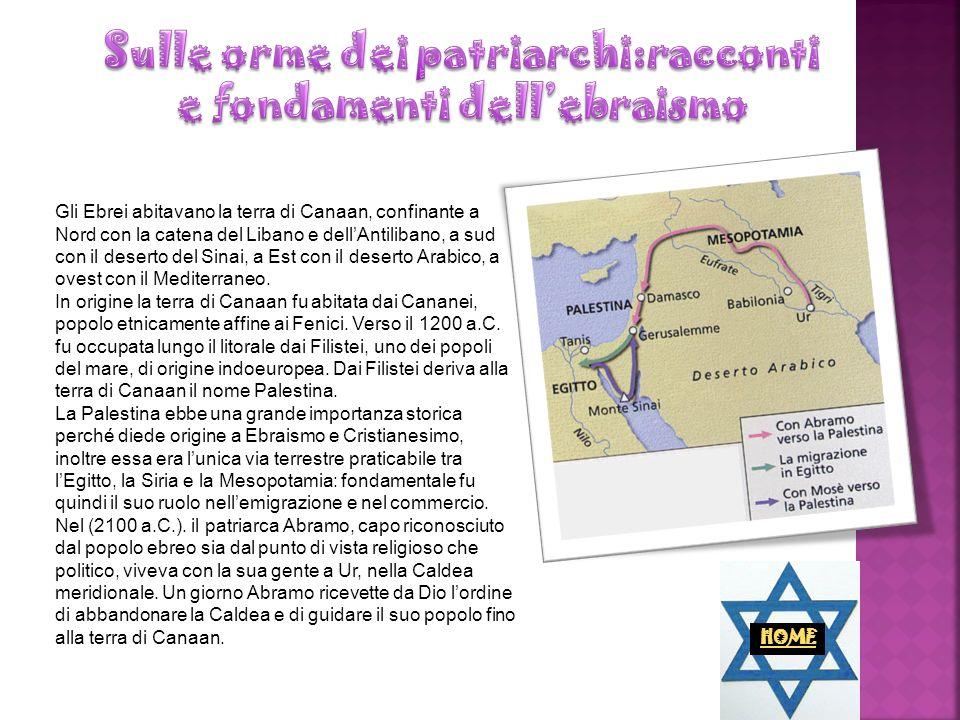 Sulle orme dei patriarchi:racconti e fondamenti dell'ebraismo
