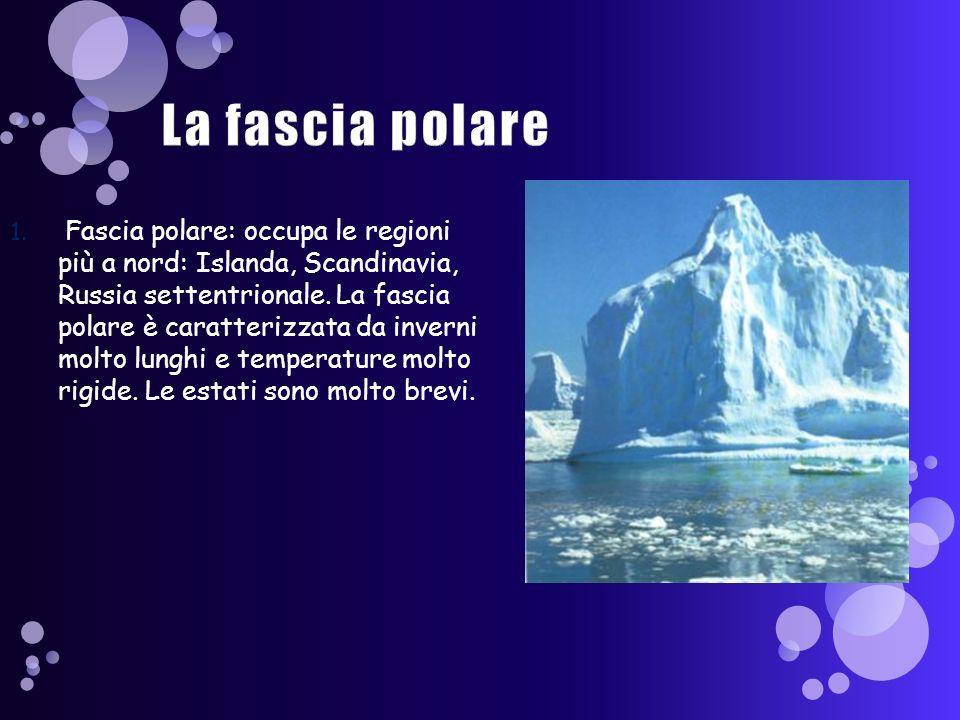 La fascia polare