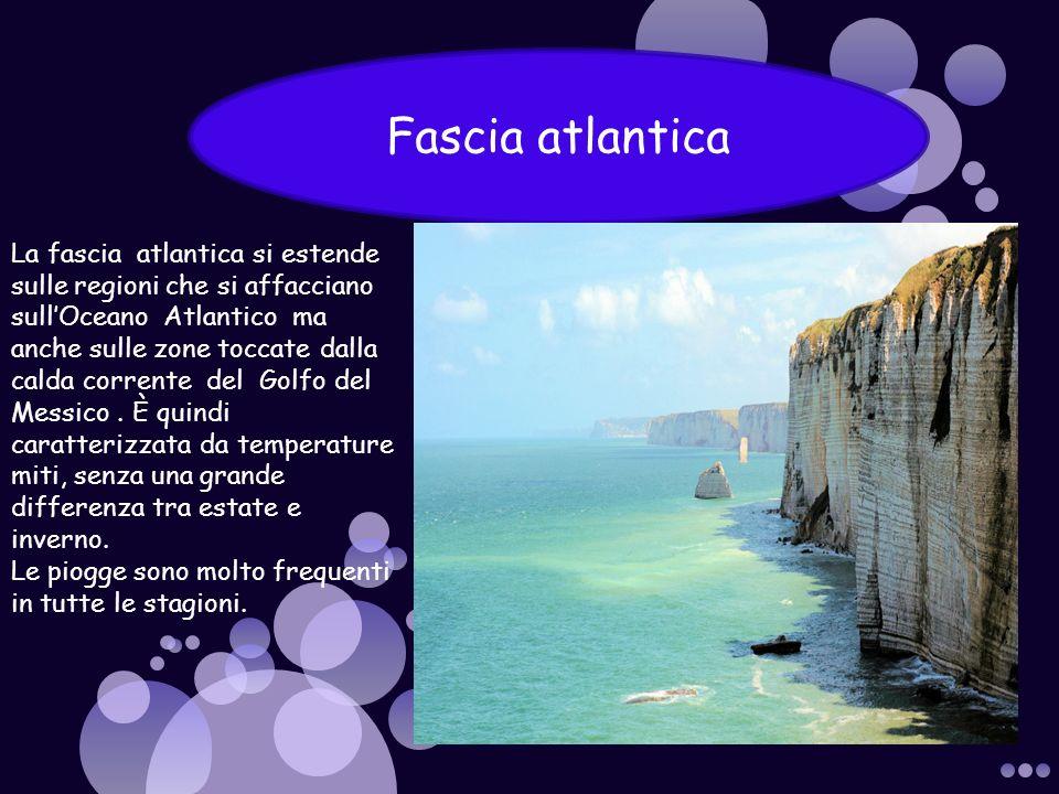 Fascia atlantica