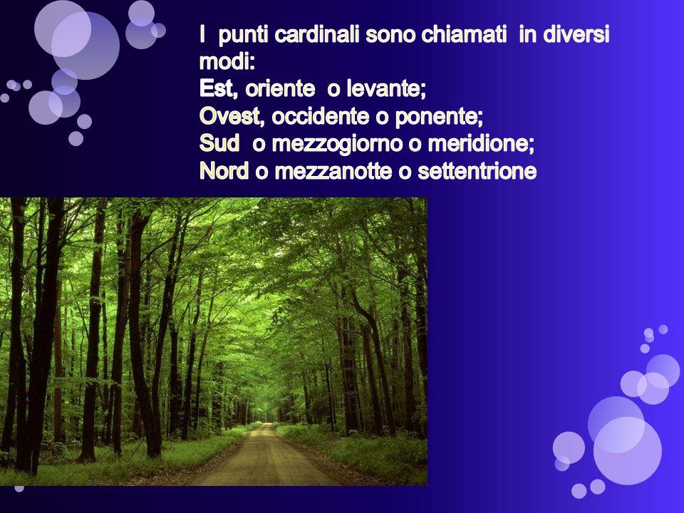 I punti cardinali sono chiamati in diversi modi: