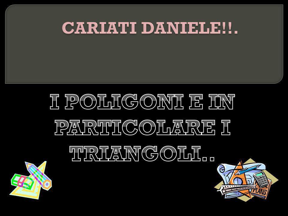 I POLIGONI E IN PARTICOLARE I TRIANGOLI..