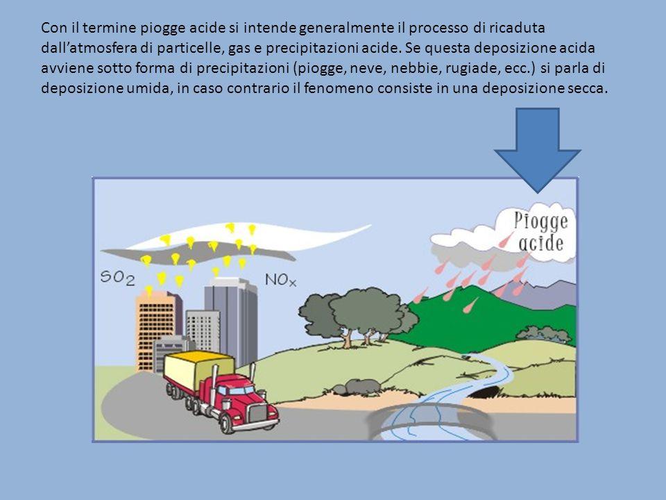 Con il termine piogge acide si intende generalmente il processo di ricaduta dall'atmosfera di particelle, gas e precipitazioni acide.