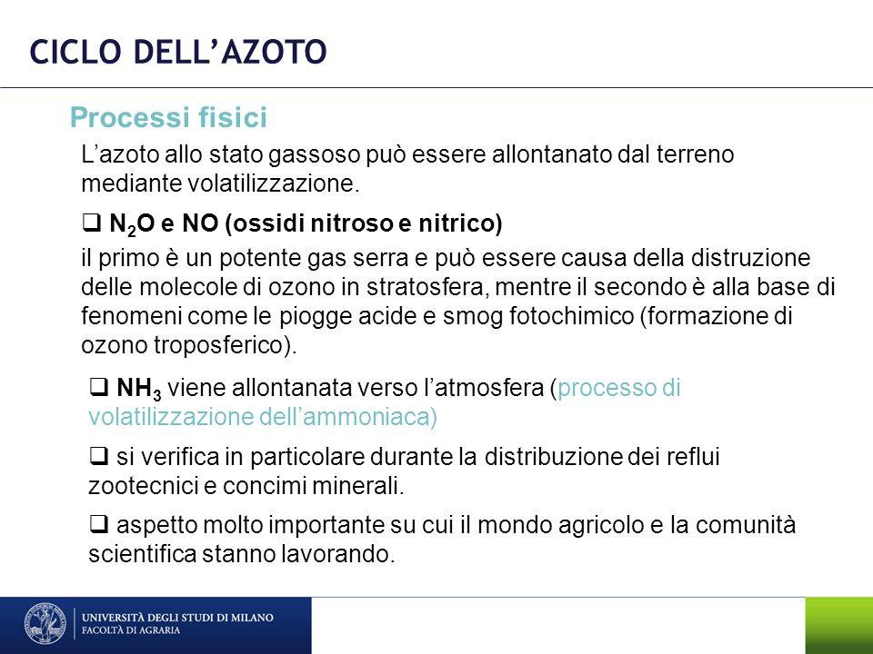 CICLO DELL'AZOTO Processi fisici