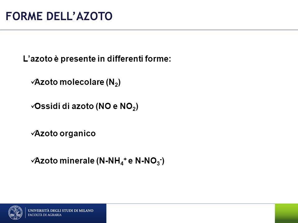 FORME DELL'AZOTO L'azoto è presente in differenti forme: