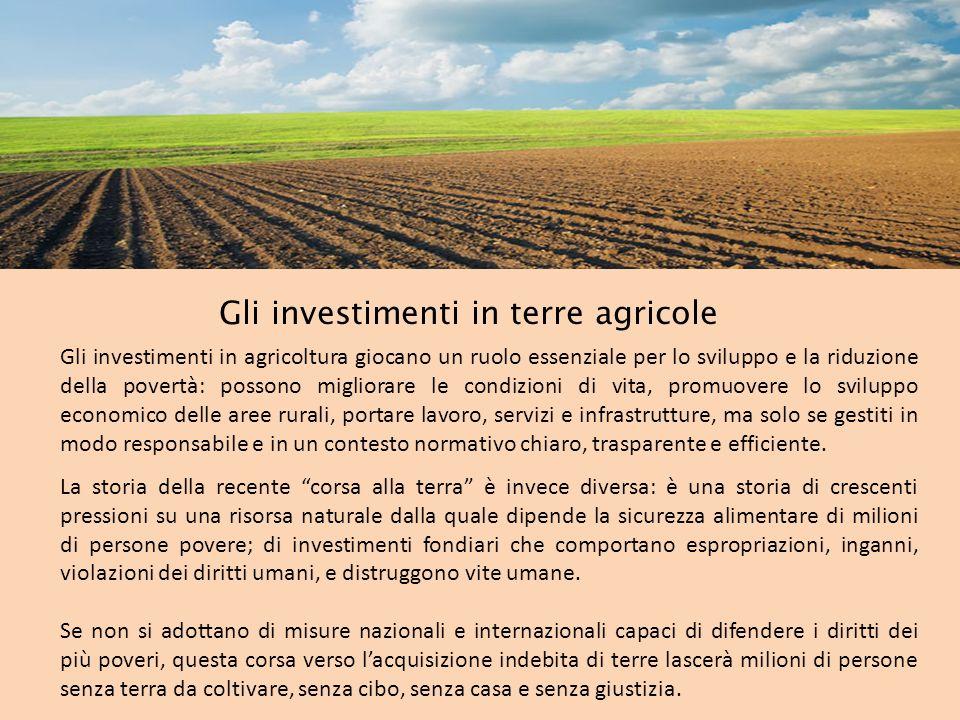Gli investimenti in terre agricole