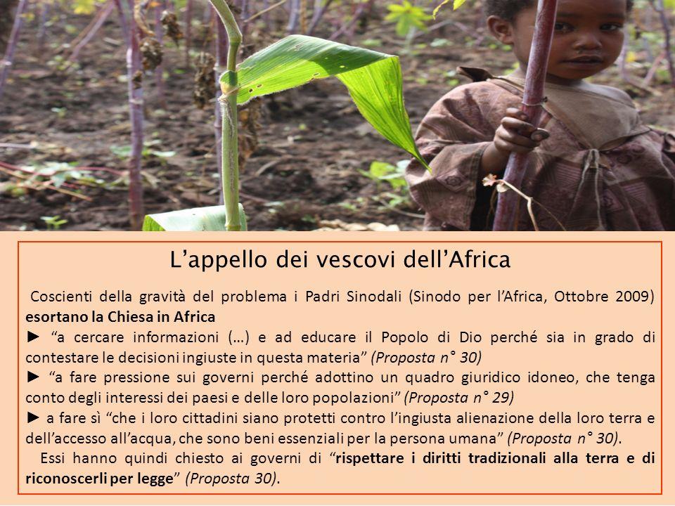 L'appello dei vescovi dell'Africa
