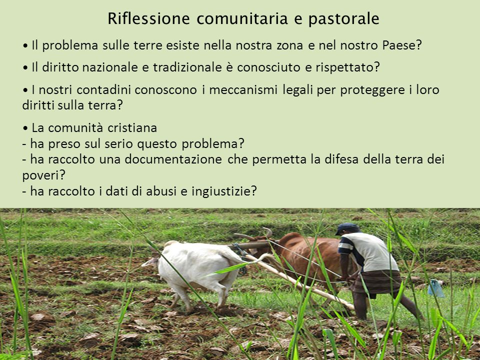 Riflessione comunitaria e pastorale