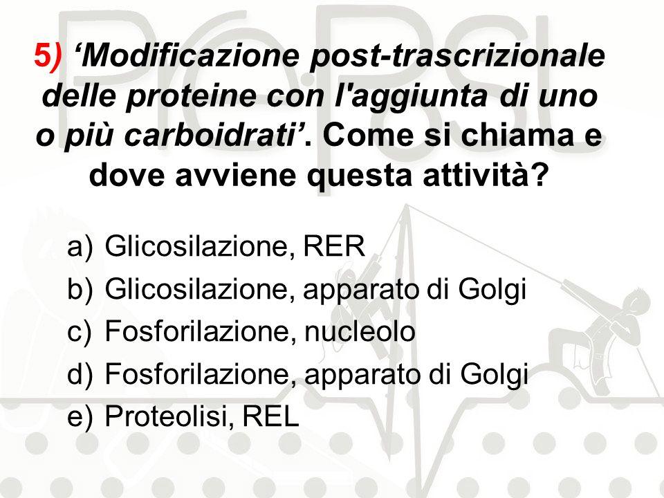 5) 'Modificazione post-trascrizionale delle proteine con l aggiunta di uno o più carboidrati'. Come si chiama e dove avviene questa attività