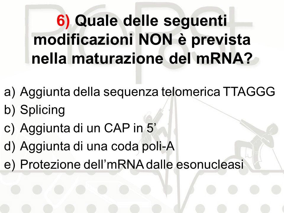 6) Quale delle seguenti modificazioni NON è prevista nella maturazione del mRNA