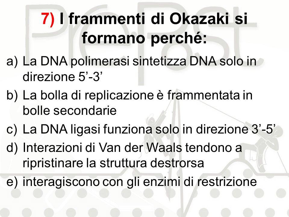 7) I frammenti di Okazaki si formano perché: