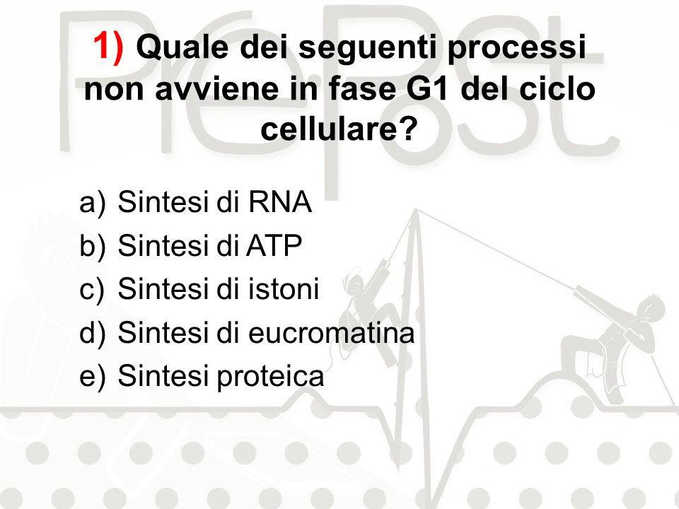 1) Quale dei seguenti processi non avviene in fase G1 del ciclo cellulare