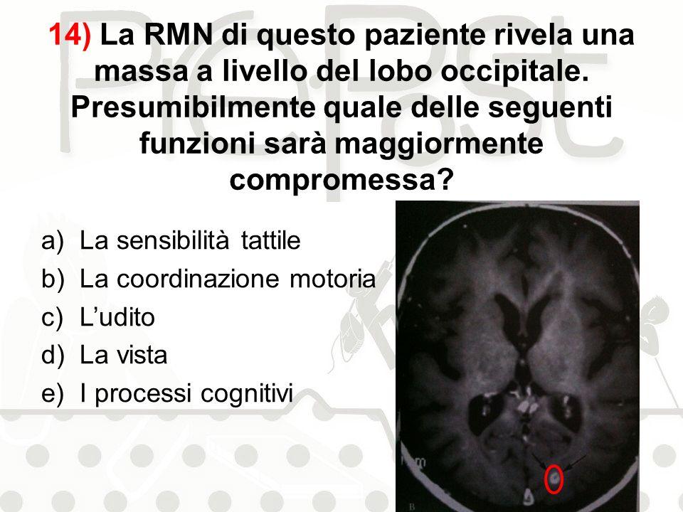 14) La RMN di questo paziente rivela una massa a livello del lobo occipitale. Presumibilmente quale delle seguenti funzioni sarà maggiormente compromessa