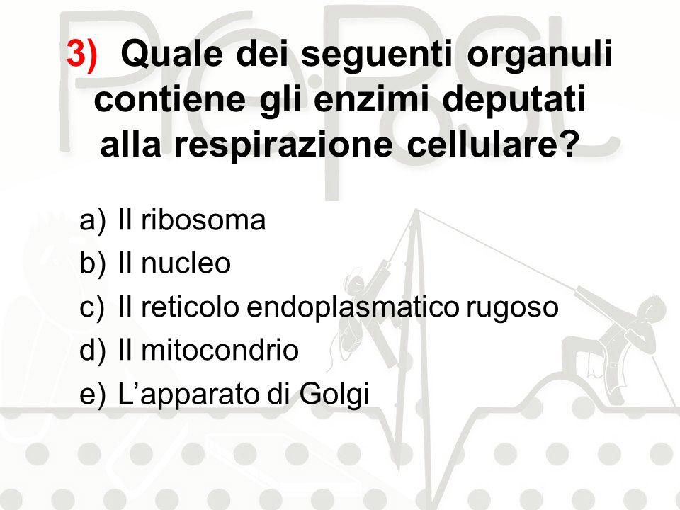 3) Quale dei seguenti organuli contiene gli enzimi deputati alla respirazione cellulare