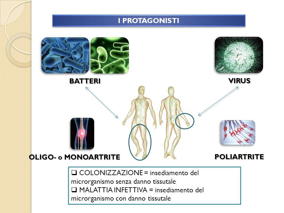 I PROTAGONISTI BATTERI. VIRUS. OLIGO- o MONOARTRITE. POLIARTRITE. COLONIZZAZIONE = insediamento del microrganismo senza danno tissutale.