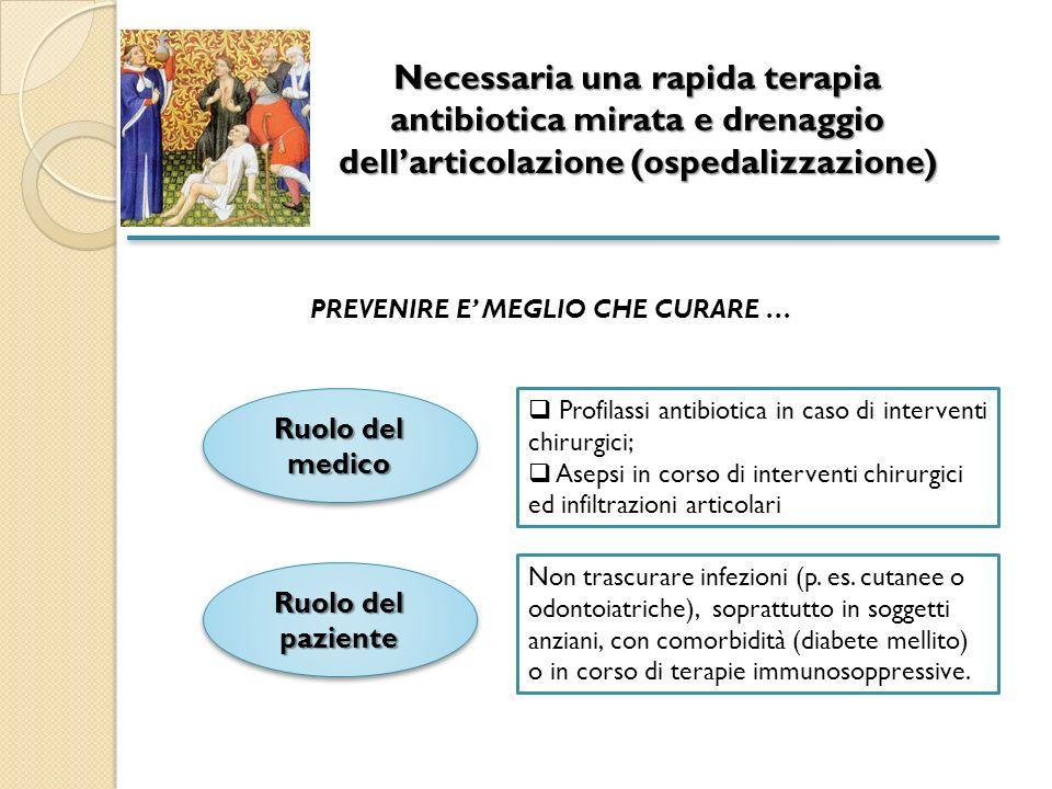 Necessaria una rapida terapia antibiotica mirata e drenaggio dell'articolazione (ospedalizzazione)