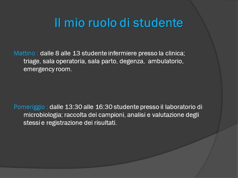 Il mio ruolo di studente