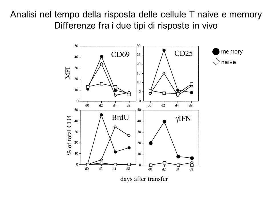Analisi nel tempo della risposta delle cellule T naive e memory Differenze fra i due tipi di risposte in vivo