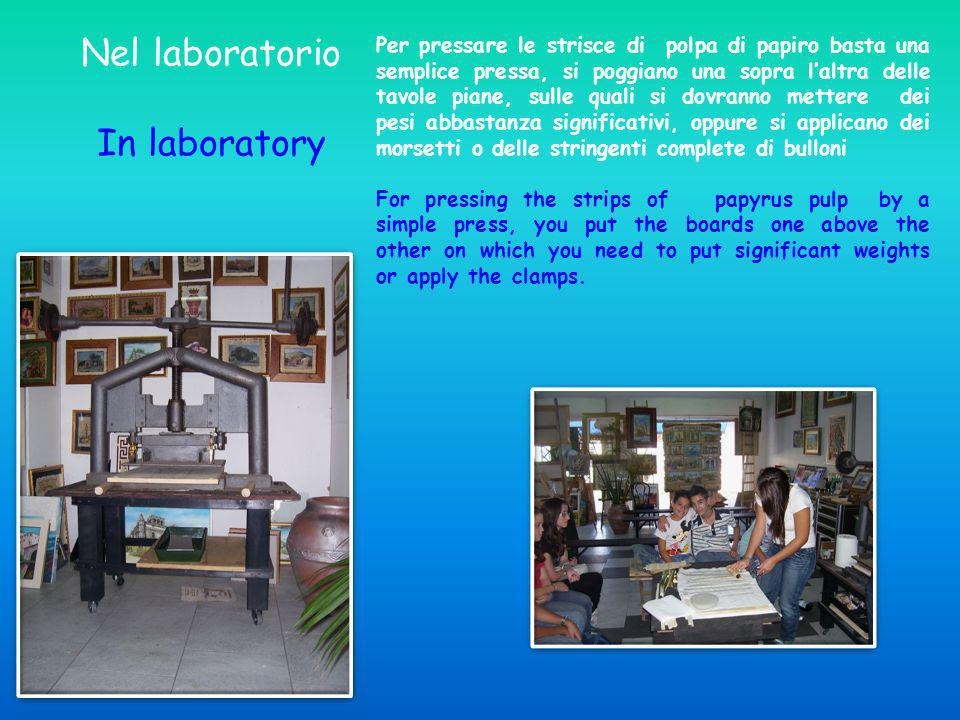 Nel laboratorio In laboratory