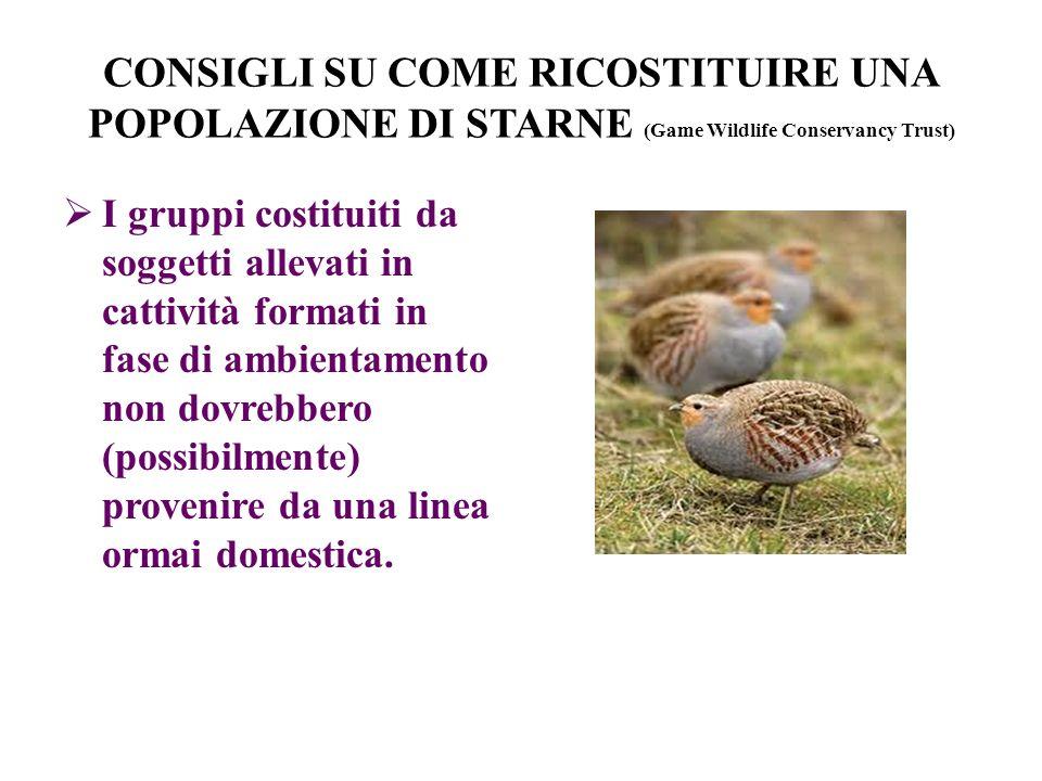 CONSIGLI SU COME RICOSTITUIRE UNA POPOLAZIONE DI STARNE (Game Wildlife Conservancy Trust)