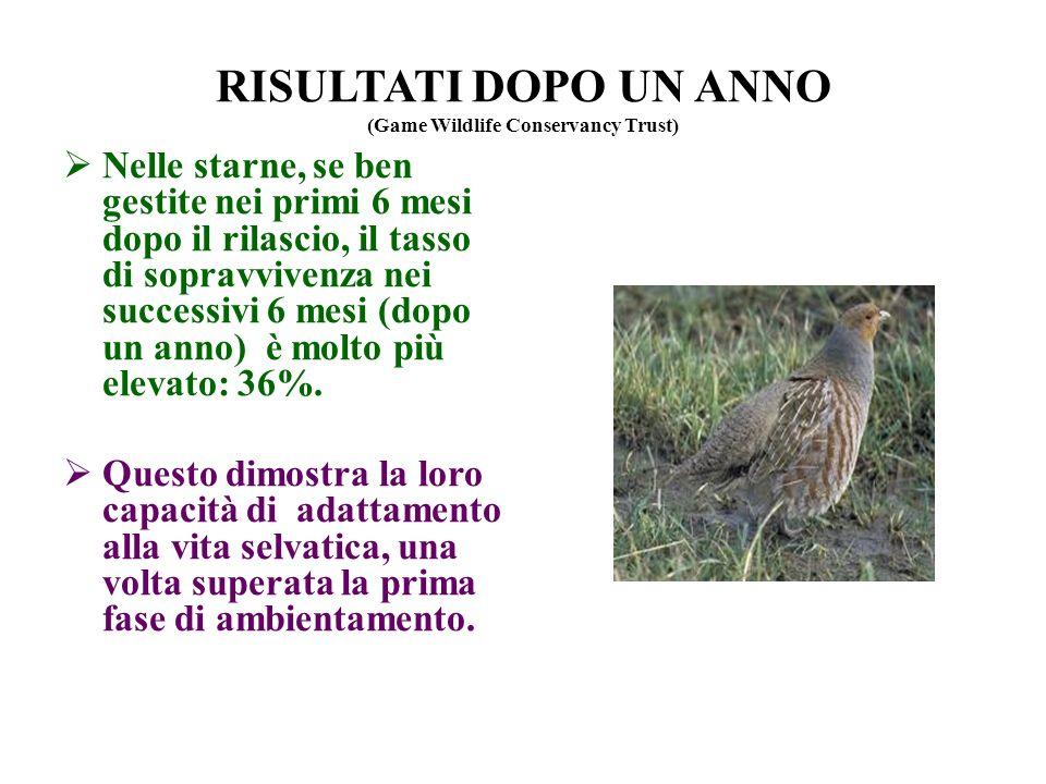 RISULTATI DOPO UN ANNO (Game Wildlife Conservancy Trust)