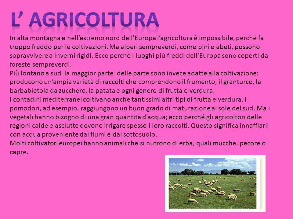 L' AGRICOLTURA