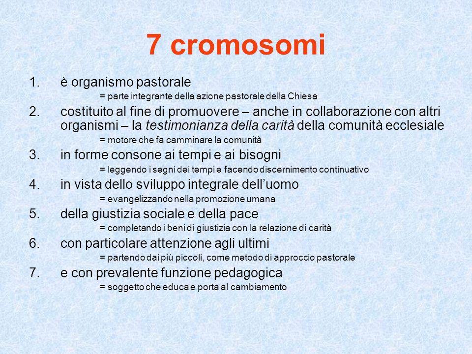 7 cromosomi è organismo pastorale