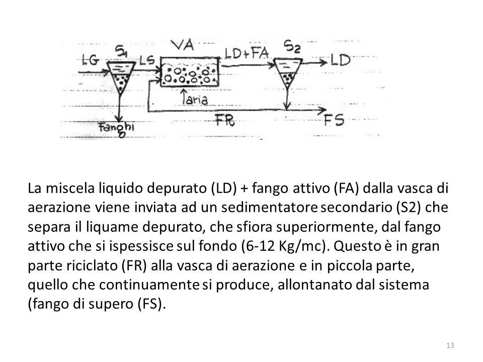 La miscela liquido depurato (LD) + fango attivo (FA) dalla vasca di aerazione viene inviata ad un sedimentatore secondario (S2) che separa il liquame depurato, che sfiora superiormente, dal fango attivo che si ispessisce sul fondo (6-12 Kg/mc).