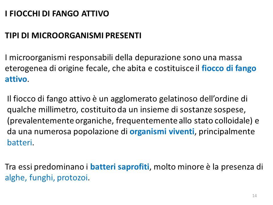 I FIOCCHI DI FANGO ATTIVO