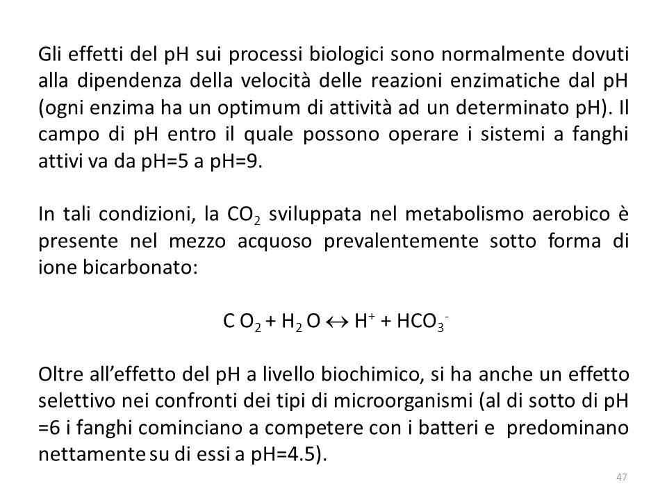 Gli effetti del pH sui processi biologici sono normalmente dovuti alla dipendenza della velocità delle reazioni enzimatiche dal pH (ogni enzima ha un optimum di attività ad un determinato pH). Il campo di pH entro il quale possono operare i sistemi a fanghi attivi va da pH=5 a pH=9.