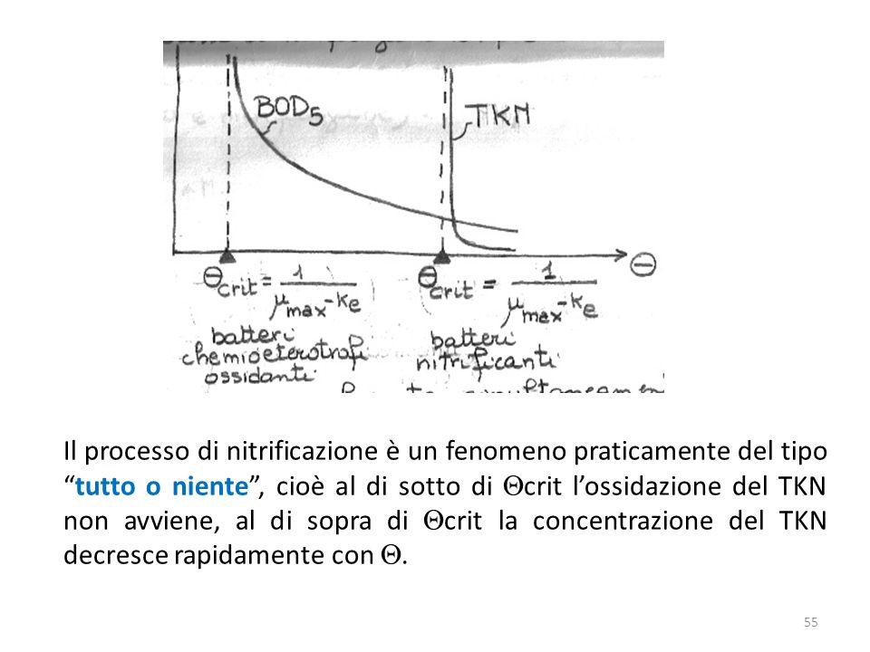 Il processo di nitrificazione è un fenomeno praticamente del tipo tutto o niente , cioè al di sotto di Qcrit l'ossidazione del TKN non avviene, al di sopra di Qcrit la concentrazione del TKN decresce rapidamente con Q.