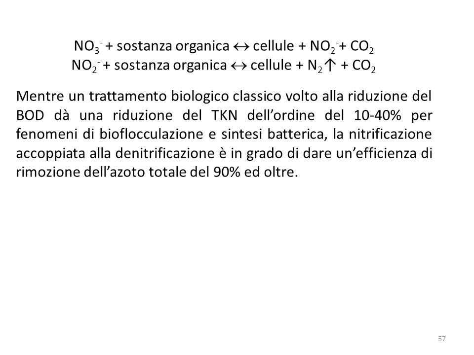NO3- + sostanza organica  cellule + NO2-+ CO2