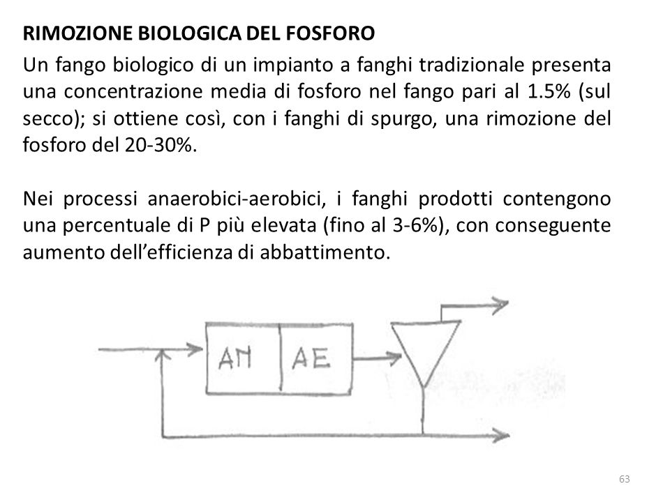 RIMOZIONE BIOLOGICA DEL FOSFORO