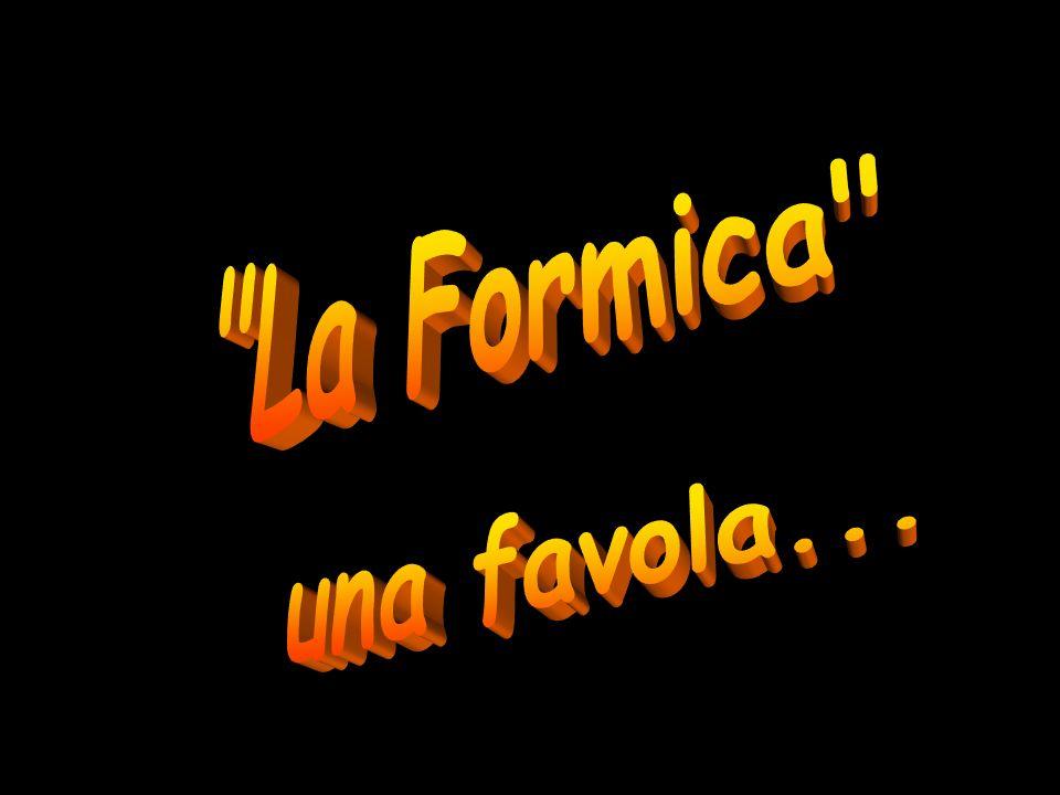 La Formica una favola...