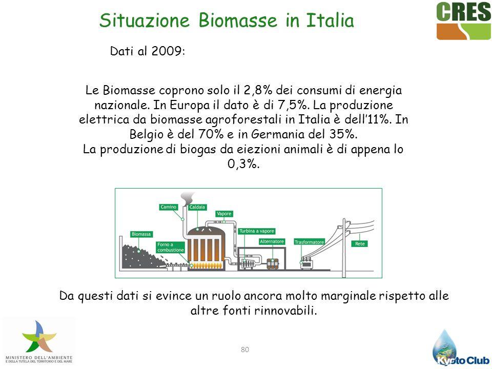 Situazione Biomasse in Italia