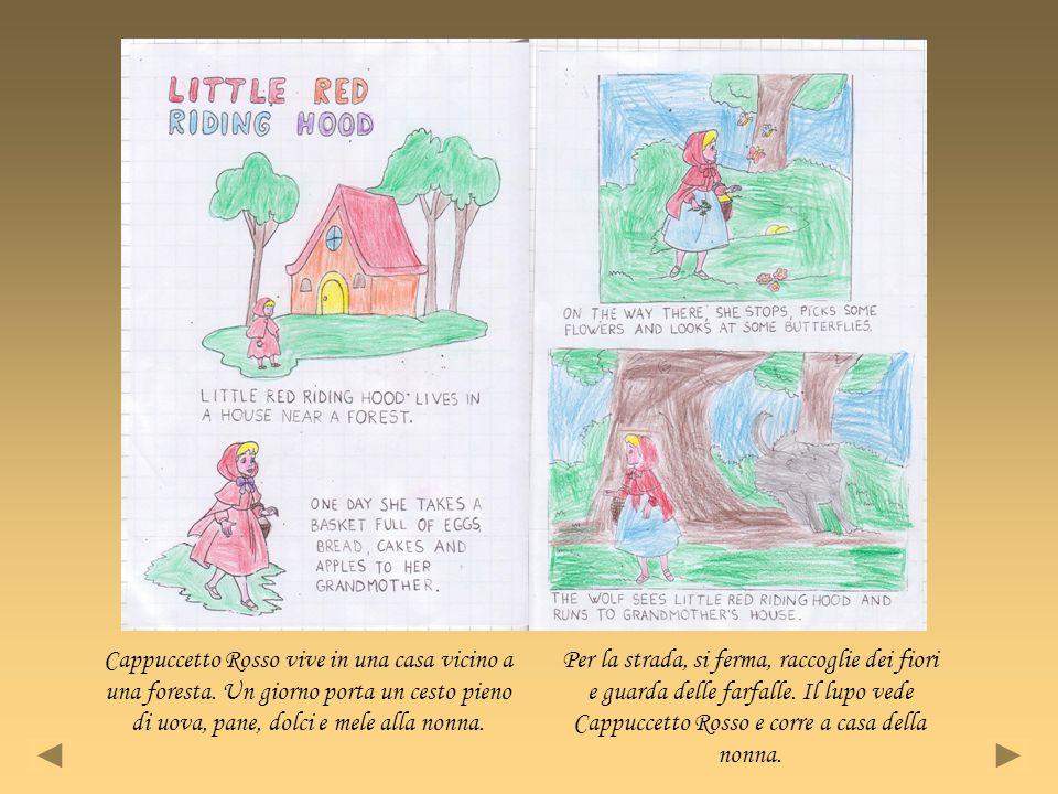 Cappuccetto Rosso vive in una casa vicino a una foresta