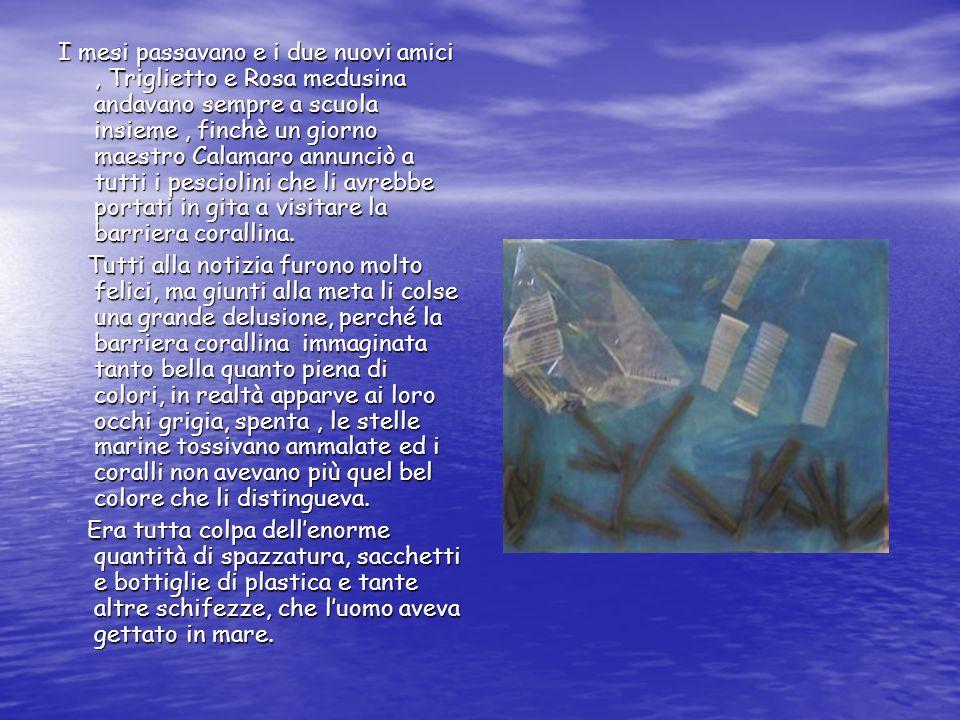 I mesi passavano e i due nuovi amici , Triglietto e Rosa medusina andavano sempre a scuola insieme , finchè un giorno maestro Calamaro annunciò a tutti i pesciolini che li avrebbe portati in gita a visitare la barriera corallina.