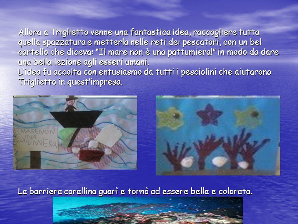 Allora a Triglietto venne una fantastica idea, raccogliere tutta quella spazzatura e metterla nelle reti dei pescatori, con un bel cartello che diceva: Il mare non è una pattumiera! in modo da dare una bella lezione agli esseri umani.