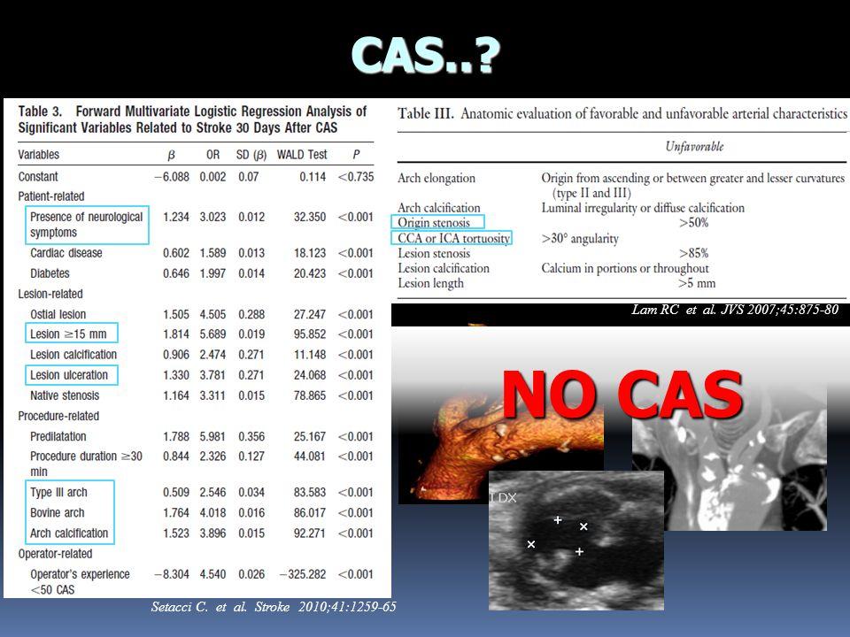 NO CAS CAS.. Lam RC et al. JVS 2007;45:875-80
