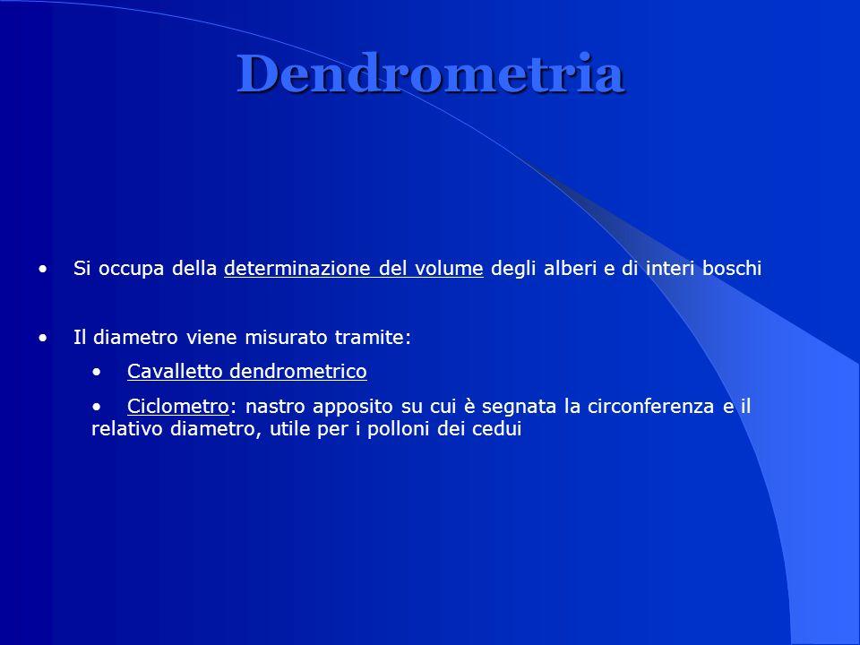 Dendrometria Si occupa della determinazione del volume degli alberi e di interi boschi. Il diametro viene misurato tramite: