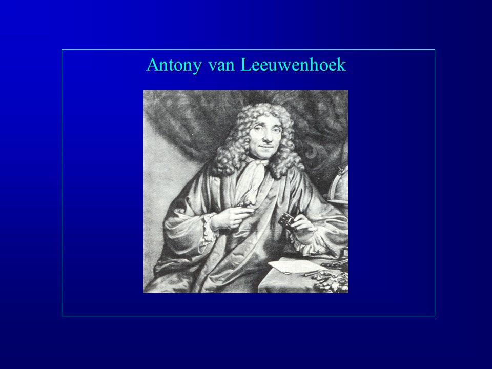 Antony van Leeuwenhoek