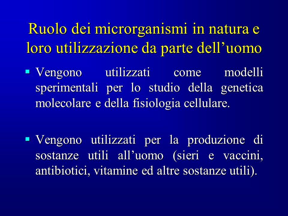Ruolo dei microrganismi in natura e loro utilizzazione da parte dell'uomo