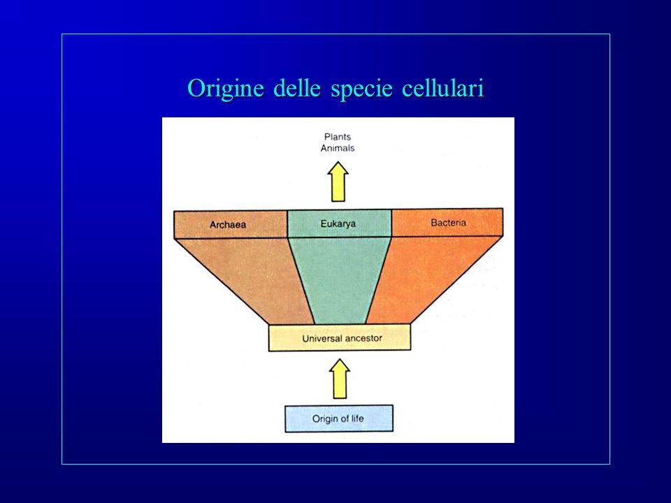 Origine delle specie cellulari