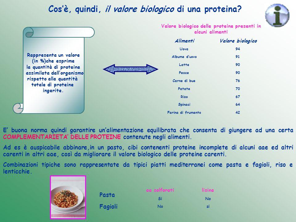 Cos'è, quindi, il valore biologico di una proteina