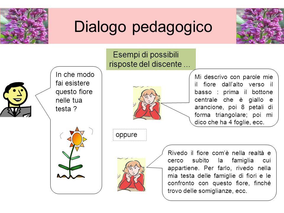 Dialogo pedagogico Esempi di possibili risposte del discente ...