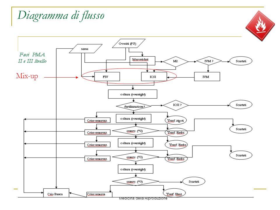 Diagramma di flusso Mix-up