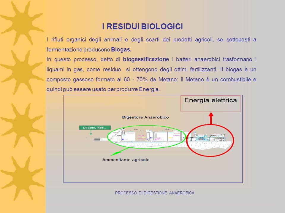 PROCESSO DI DIGESTIONE ANAEROBICA