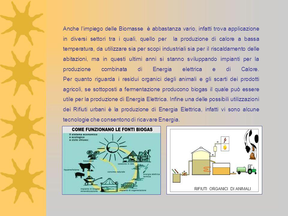 Anche l'impiego delle Biomasse è abbastanza vario, infatti trova applicazione in diversi settori tra i quali, quello per la produzione di calore a bassa temperatura, da utilizzare sia per scopi industriali sia per il riscaldamento delle abitazioni, ma in questi ultimi anni si stanno sviluppando impianti per la produzione combinata di Energia elettrica e di Calore. Per quanto riguarda i residui organici degli animali e gli scarti dei prodotti agricoli, se sottoposti a fermentazione producono biogas il quale può essere utile per la produzione di Energia Elettrica. Infine una delle possibili utilizzazioni dei Rifiuti urbani è la produzione di Energia Elettrica, infatti vi sono alcune tecnologie che consentono di ricavare Energia.
