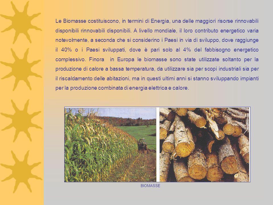 Le Biomasse costituiscono, in termini di Energia, una delle maggiori risorse rinnovabili disponibili rinnovabili disponibili. A livello mondiale, il loro contributo energetico varia notevolmente, a seconda che si considerino i Paesi in via di sviluppo, dove raggiunge il 40% o i Paesi sviluppati, dove è pari solo al 4% del fabbisogno energetico complessivo. Finora in Europa le biomasse sono state utilizzate soltanto per la produzione di calore a bassa temperatura, da utilizzare sia per scopi industriali sia per il riscaldamento delle abitazioni, ma in questi ultimi anni si stanno sviluppando impianti per la produzione combinata di energia elettrica e calore.
