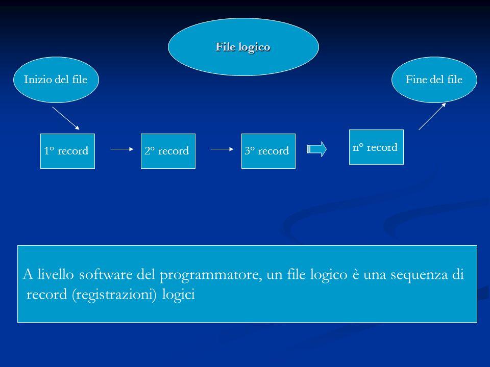 A livello software del programmatore, un file logico è una sequenza di